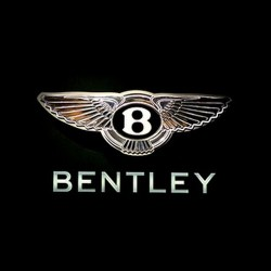 Bentley Bentley For Men Absolute Erkek Parfüm
