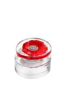 Kenzo Flower in the Air Eau de Toilette Bayan Parfüm