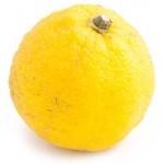 Japon yuzu limonu