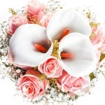 Çiçek notaları