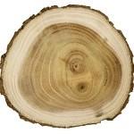 Guaiac ağacı