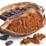 Kakao Kabuğu
